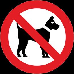 Zabraneno za kucheta
